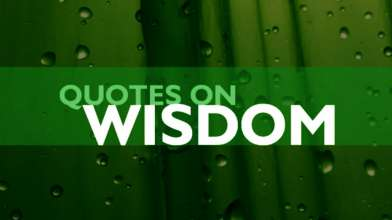 Wisdom Quotes - Part 2 - Top 10 Wisdom Quotes